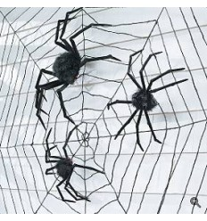 SET OF TWO SPIDERS