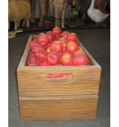 FRUITS APPLE CASE FULL RED